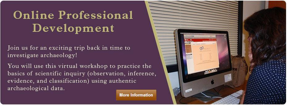 Online project development