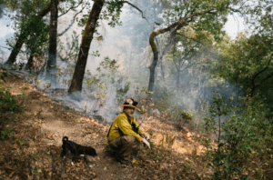 Photo of Rick O'Rourke, a Yurok fire practitioner in Weitchpec, CA. (Photo from https://www.theguardian.com/us-news/2019/nov/21/wildfire-prescribed-burns-california-native-americans)