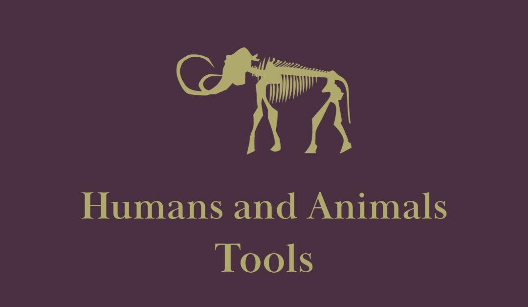 Humans and Animals: Tools